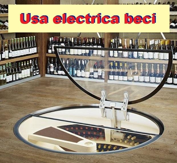 automatizare-deschidere-electrica-usa-beci-cu-telecomanda-pret-img000895n9738953.jpg