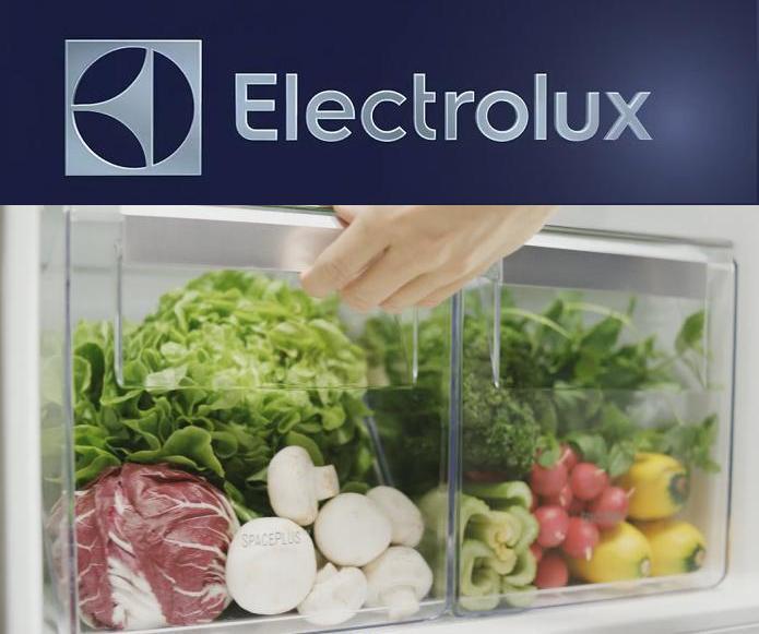 combine-frigorifice-side-by-side-Electrolux-clasa-A++++-pret-img73895g367857904k309248718652413239.jpg
