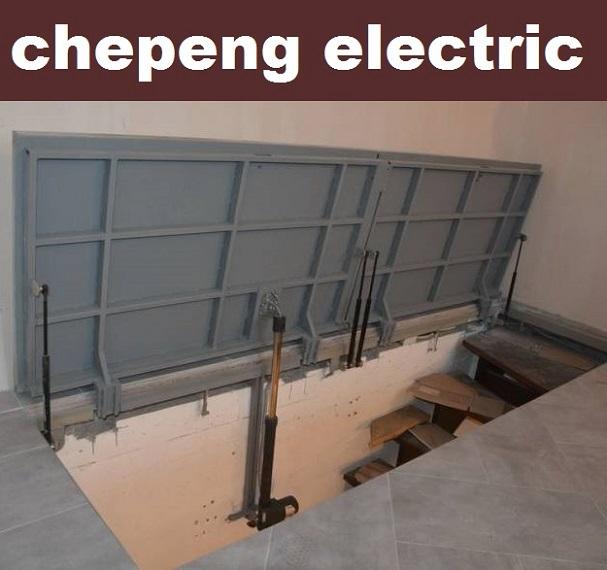 automatizare-deschidere-electrica-usa-beci-cu-telecomanda-pret-redus-completco-ro-img55000n83724754672565493.jpg